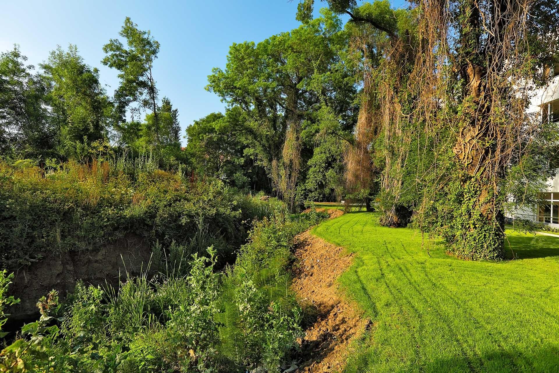 градина в хотел Емберли
